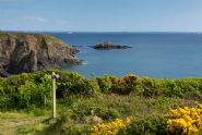 Cottages to rent in Pembrokeshire